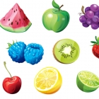 Fruit Studies